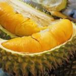 Tips Memilih Durian Agar Tidak Ditipu Pedagang yang Perlu Kamu Tahu