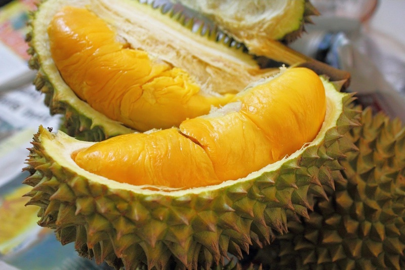 durian-montong