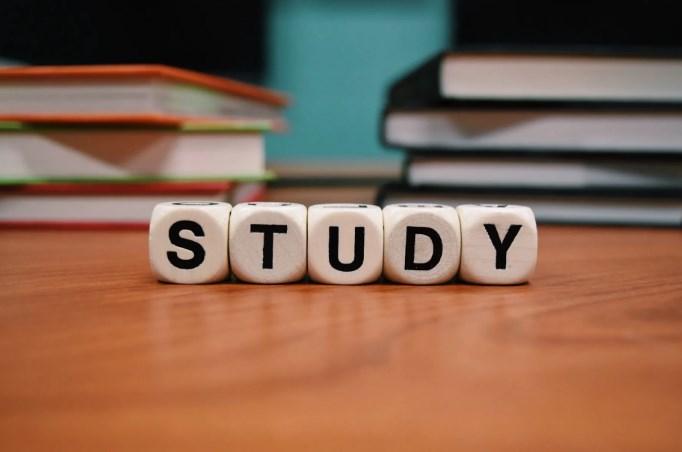 Studi-Kasus-Meranking-Website-Baru-Seputar-Jasa-Sosial-Media